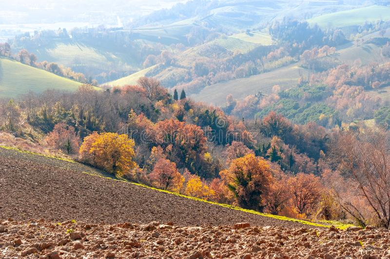 Autumn with yellow and orange trees on the Marche`s hill in the Montefeltro region. Seen from Belvedere Fogliense between Ricione and Urbino, in Italy stock photo