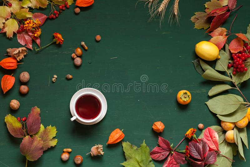 Autumn yellow and Red leaves and fruits on a green background royalty free stock images