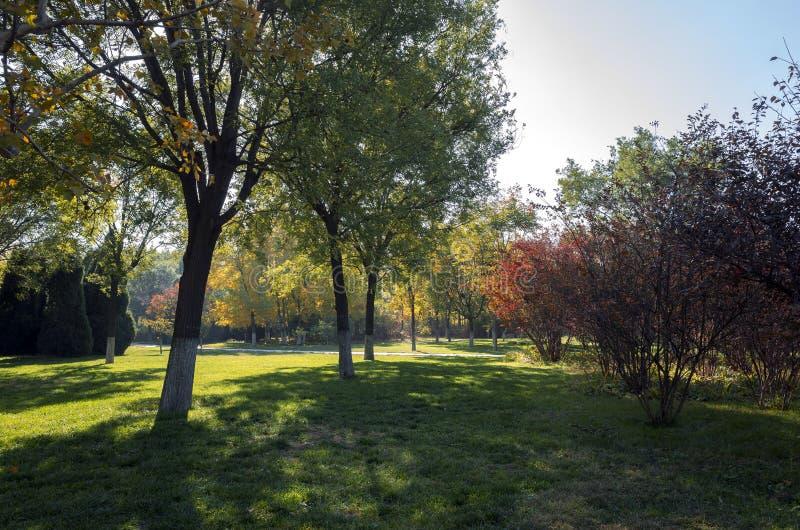 Autumn in Zibo Botanical Garden. Shandong province, Zibo city, China stock photo