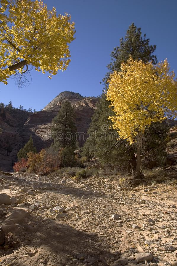 Autumn In Zion Stock Photo