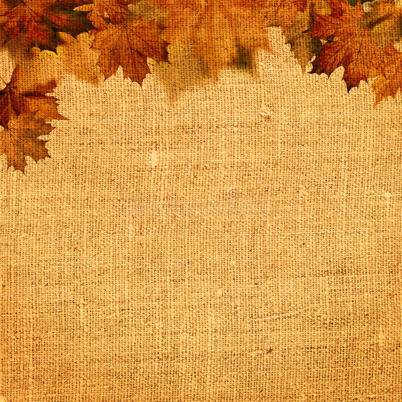 Autumnal abstract still life. Over hessian background for your design stock photography
