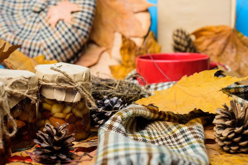 Autumnal beverage with homemade natural sweets. Natural homemade treats autumn season keep healthy. Hat scarf and honey royalty free stock image