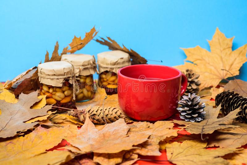 Autumnal beverage with homemade natural sweets. Set three jams honey natural sweets in jars and mug of tea background stock photography