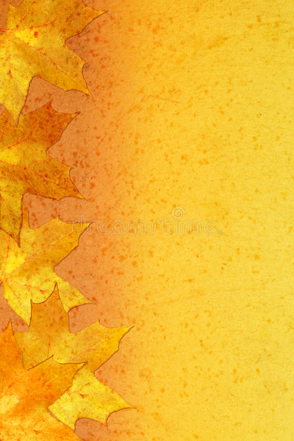 Free Autumnal Bright Background Royalty Free Stock Photos - 16636178