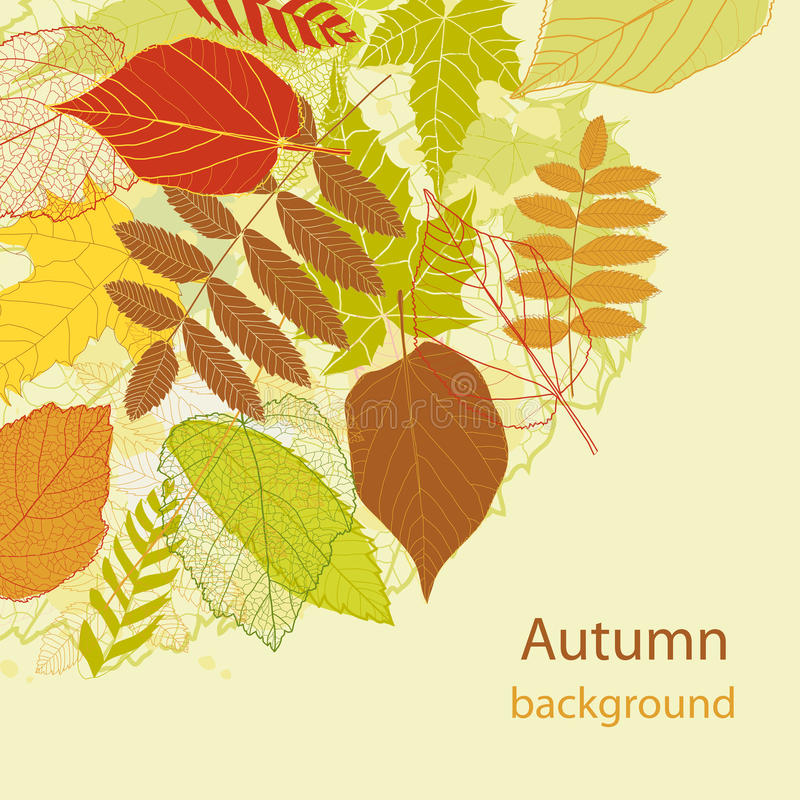 Download Autumnal Bright Leaf Background Vector Stock Vector - Image: 26199281