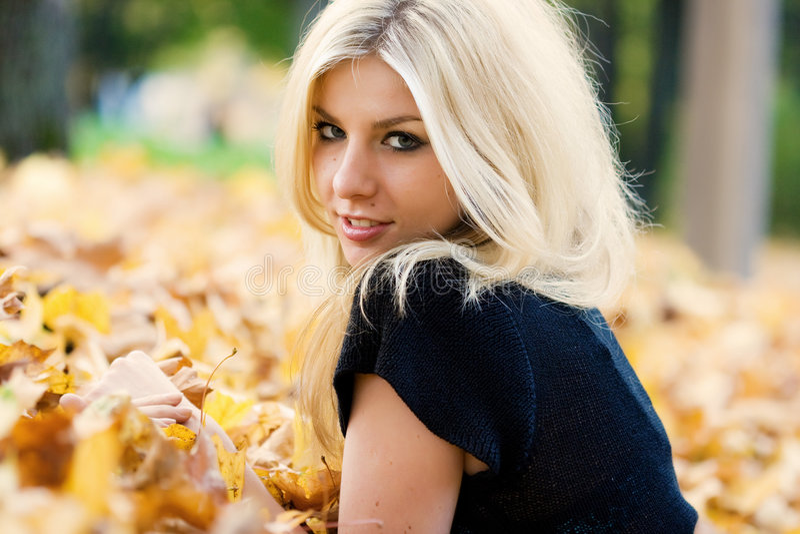 Autumnal Carpet Stock Images