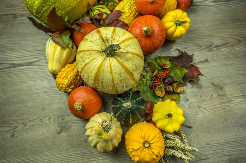 Autumnal decoration from various fruits royalty free stock image
