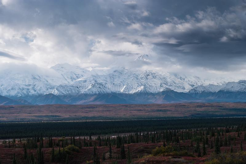 Autumnal Denali National Park Scenery in cloudy day stock image