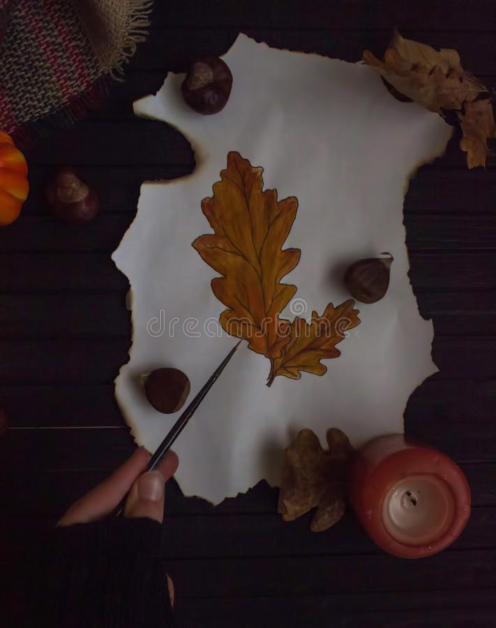 Autumnal drawing of colorful leaves royalty free stock photos