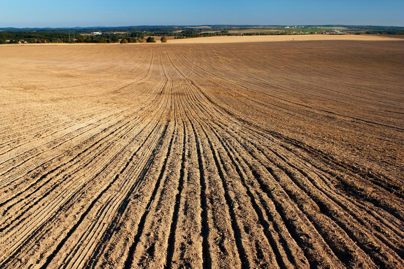 Download Autumnal field stock photo. Image of blue, growth, harvest - 27022538