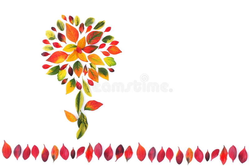 Autumnal flower. Beautiful decoration made from multicolored autumn leaves, background royalty free stock image