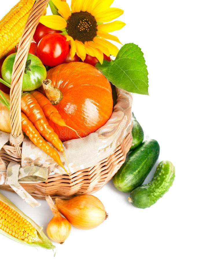 Autumnal harvest vegetables and fruits in basket royalty free stock photo