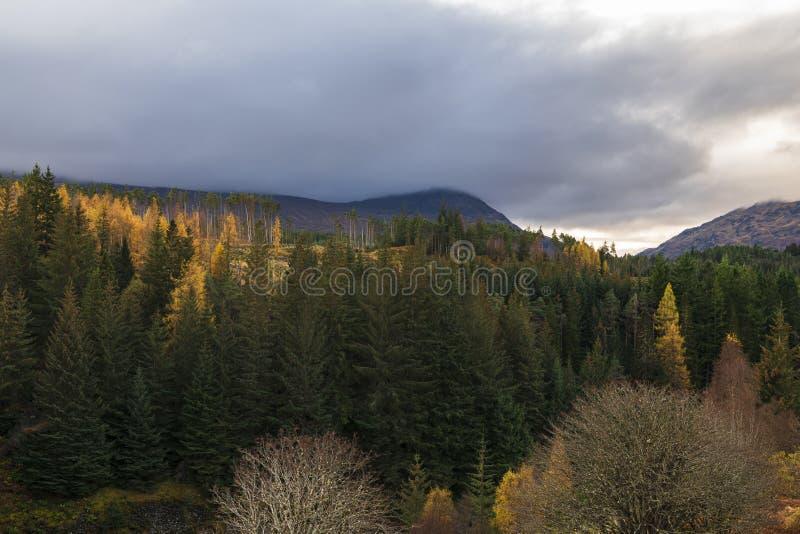 Autumnal Badenoch stock photos