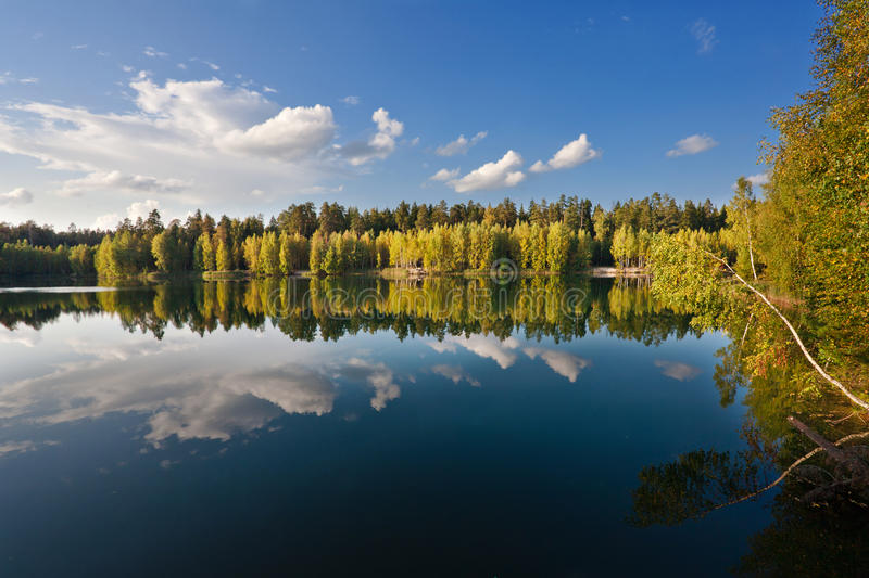 Download Autumnal lake stock photo. Image of branch, colour, forest - 15014074
