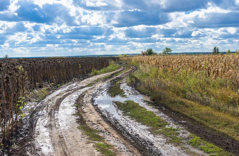 Download Autumnal Landscape In Ukraine Stock Photo - Image: 34118734