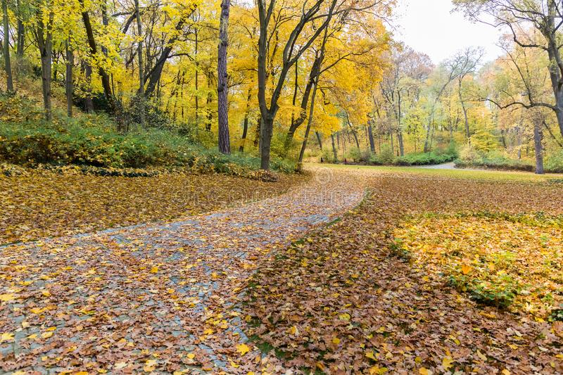 Autumnal landscape in a Warsaw park in Poland stock photo