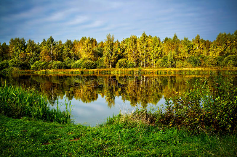 Autumnal nature, scenery. Forest and river royalty free stock images
