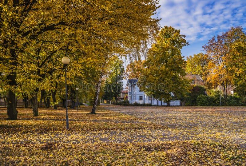 Autumnal park, Dubulti, Latvia royalty free stock photos