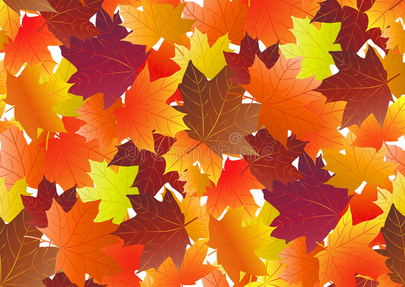 Autumnal pattern with fall maple leaves. Vector illustration.  stock illustration