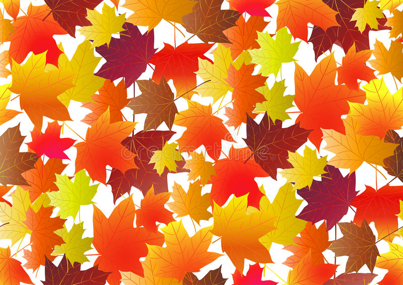 Autumnal pattern with fall maple leaves. Vector illustration.  royalty free illustration