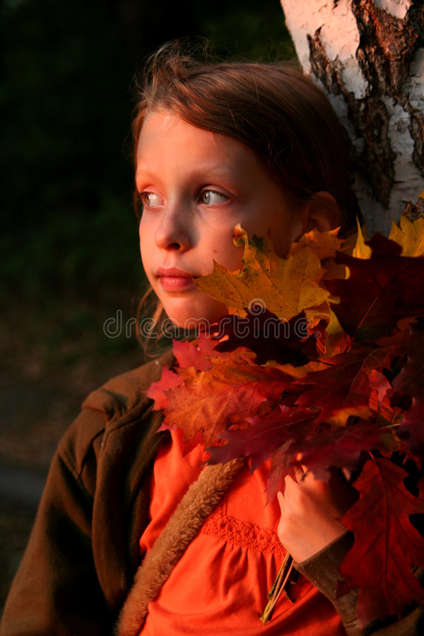 Autumnal portrait at sunset royalty free stock image