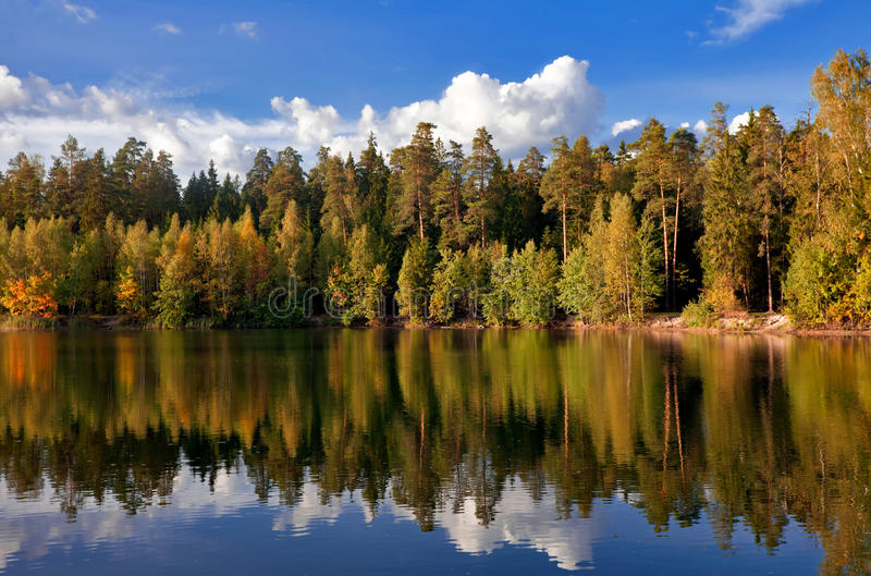 Download Autumnal river stock image. Image of lake, outdoor, flora - 16306687