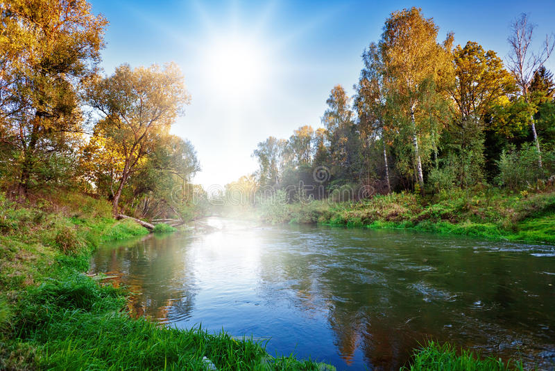 Download Autumnal river stock photo. Image of orange, branch, leaf - 16307404
