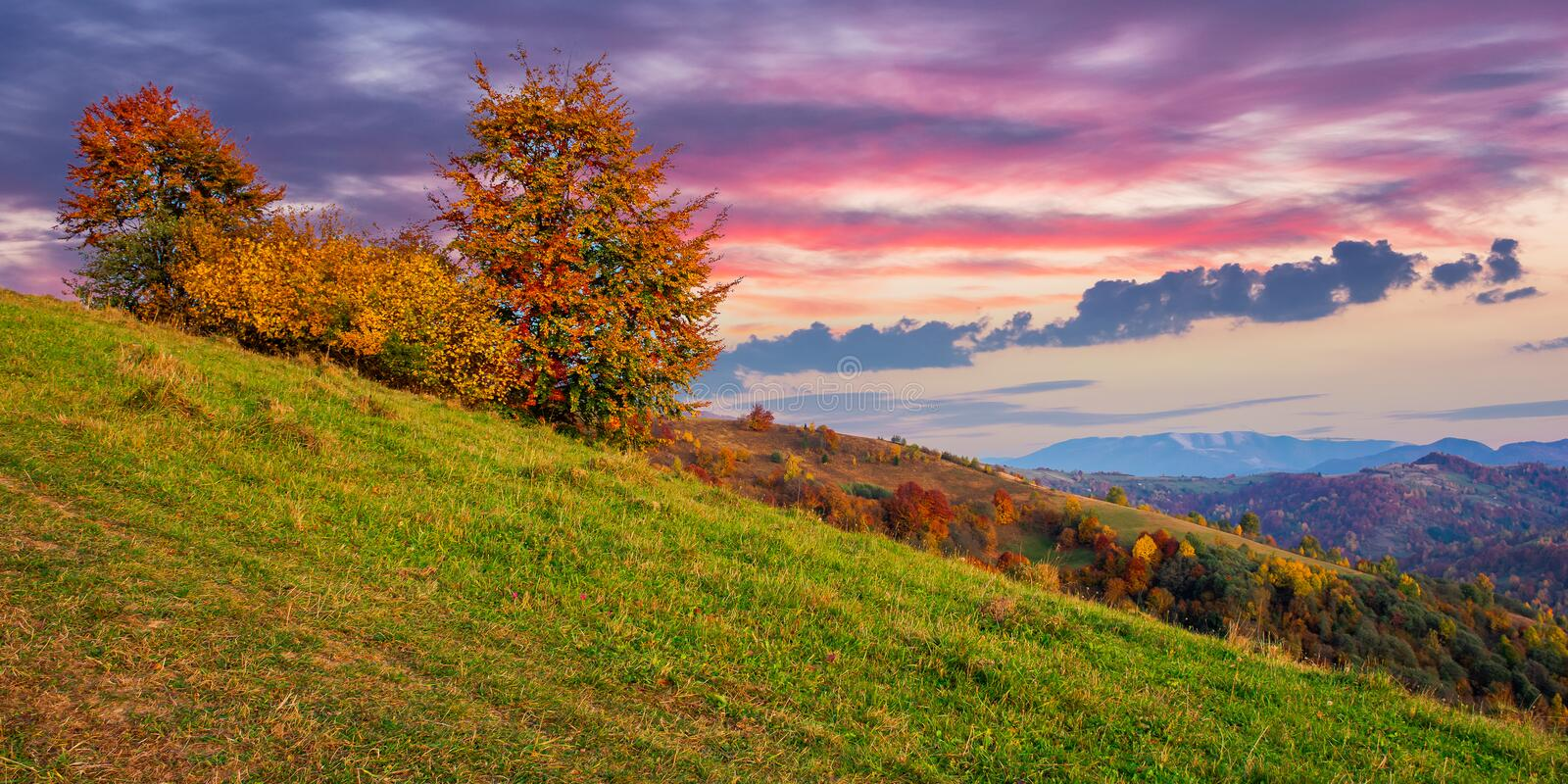 Autumnal rural landscape at dusk royalty free stock photography