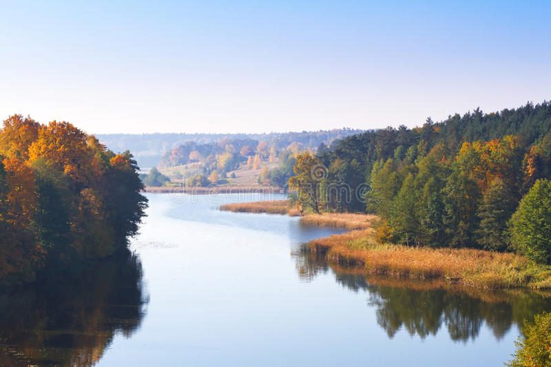 Autumnal scenery of forest at the lake stock photos