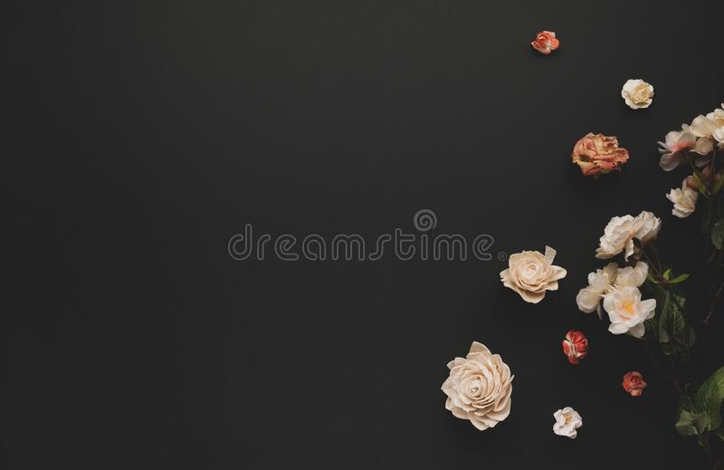 Autumnal-winter concept with dried flowers on dark background. Frame of plants. Flat lay, copy space royalty free stock photo