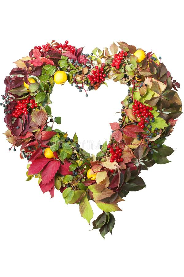 Autumnal wreath in the shape of heart from colored leaves of grapes, berries, quince, isolated on white background. royalty free stock photos