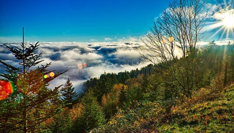 Autumng-Jahreszeit in den rauchigen Bergen lizenzfreie stockbilder