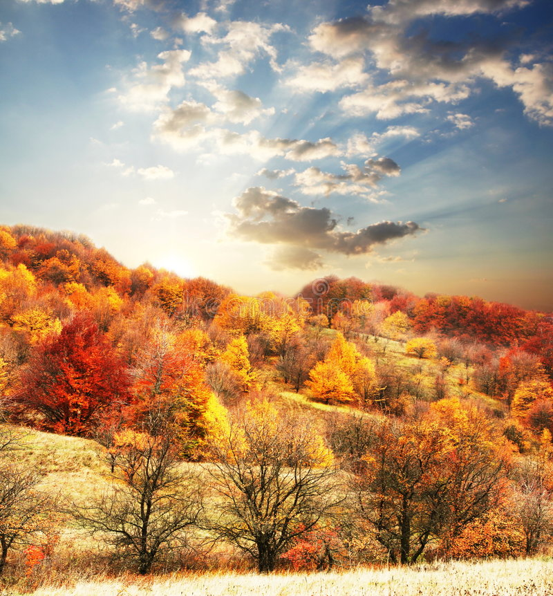 autunno immagini stock
