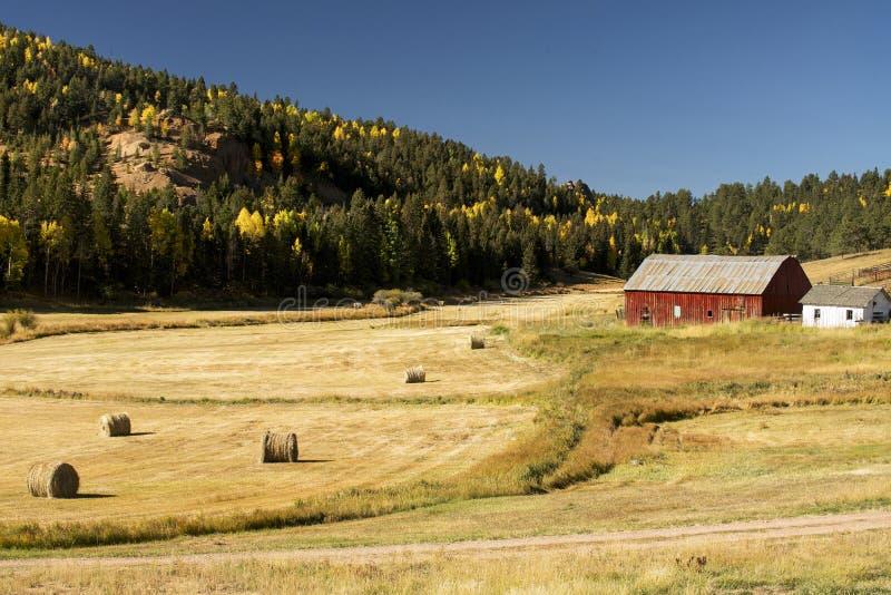 Autunno ad un ranch di Colorado fotografie stock libere da diritti