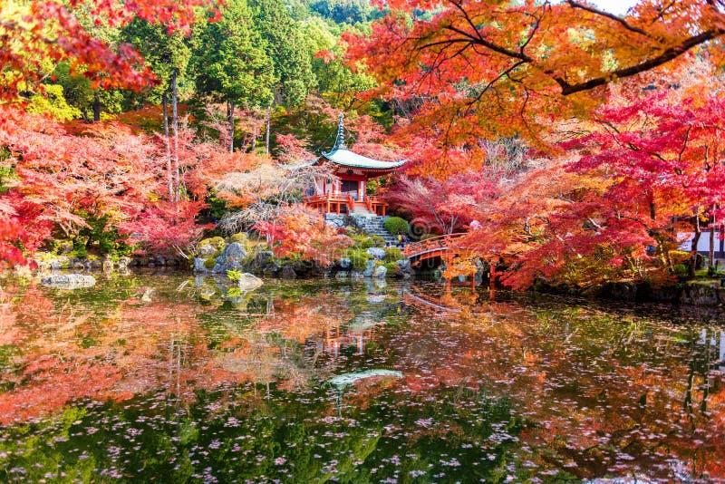 Autunno al tempio di daigoji fotografia stock