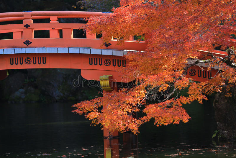 Autunno al tempio di Daigoji a Kyoto immagini stock libere da diritti