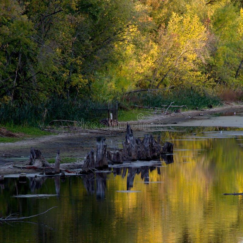Autunno in anticipo Nella sera sul lago immagine stock