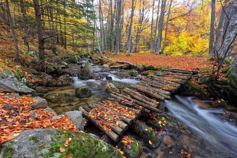 Autunno in Bulgaria fotografia stock
