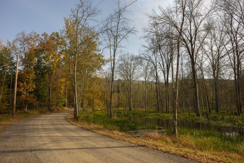 Autunno Country Road immagine stock libera da diritti