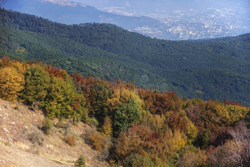 Autunno deciduo e foreste di conifere e una città nella valle nei precedenti fotografia stock libera da diritti