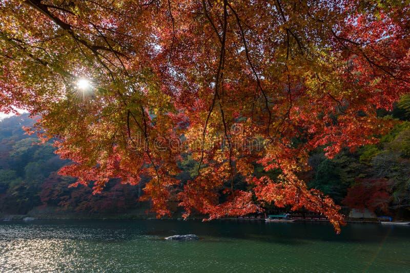 Autunno di Kyoto fotografie stock