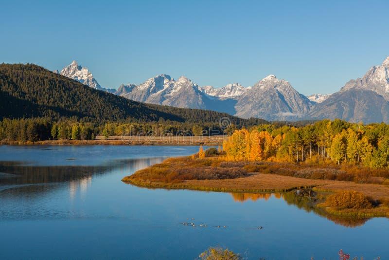 Autunno di Teton alla curvatura di Oxbow immagine stock libera da diritti