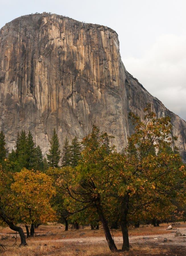 Autunno di Yosemite fotografie stock