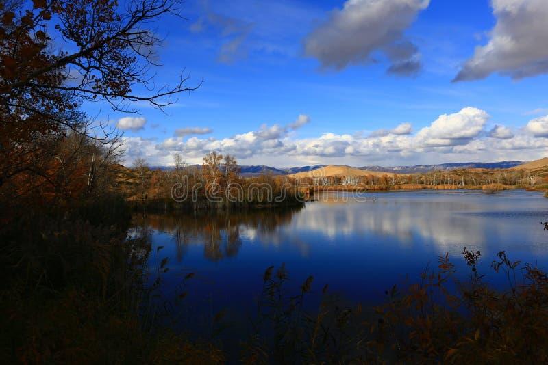 Autunno dorato del lago bianco sand fotografie stock libere da diritti