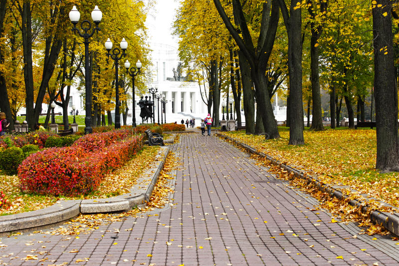 Autunno dorato a Minsk immagine stock libera da diritti