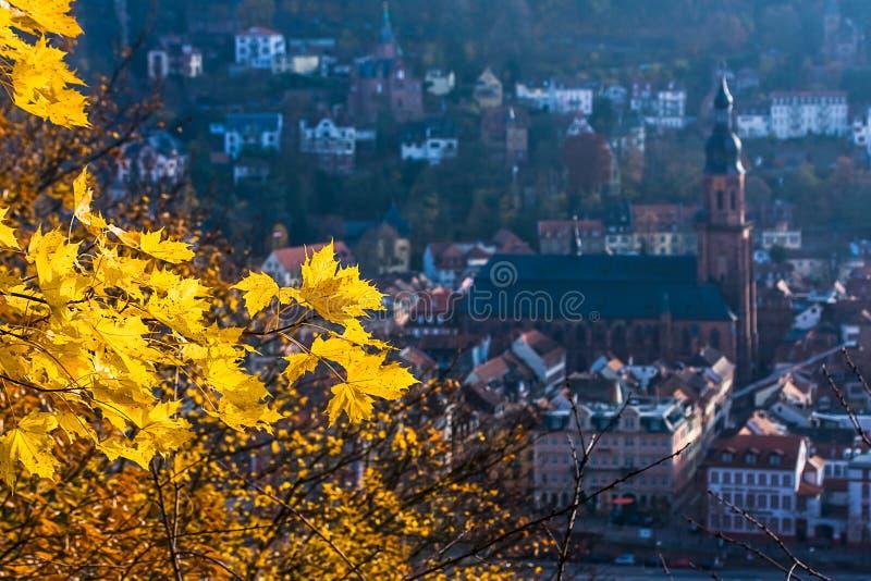 Autunno a Heidelberg fotografia stock libera da diritti