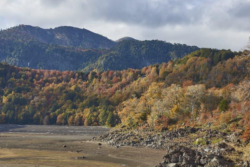 Autunno nel parco nazionale di Conguillio, Cile del sud fotografie stock libere da diritti