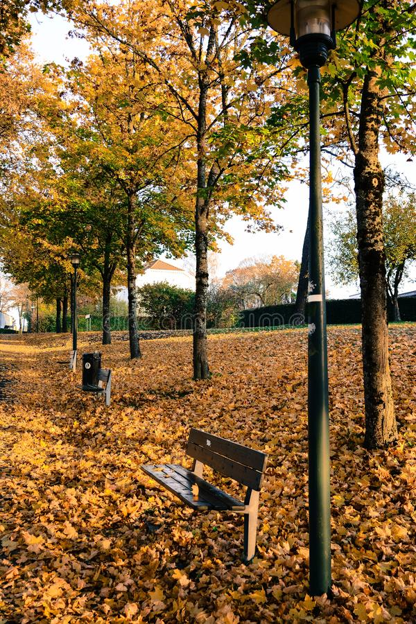 Autunno nel parco pubblico in Svezia che cammina per lavorare fotografia stock libera da diritti