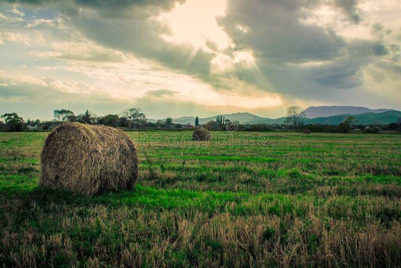Autunno nel territorio di Primorsky fotografie stock libere da diritti