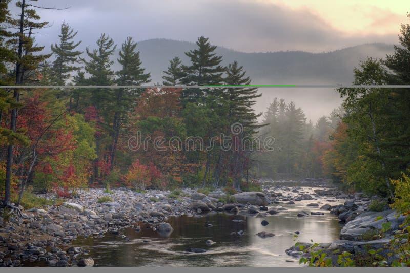 Download Autunno nella foresta immagine stock. Immagine di fiume - 3886113